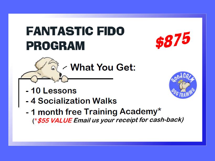 FANTASTIC FIDO PRIVATE PROGRAM - What You Get